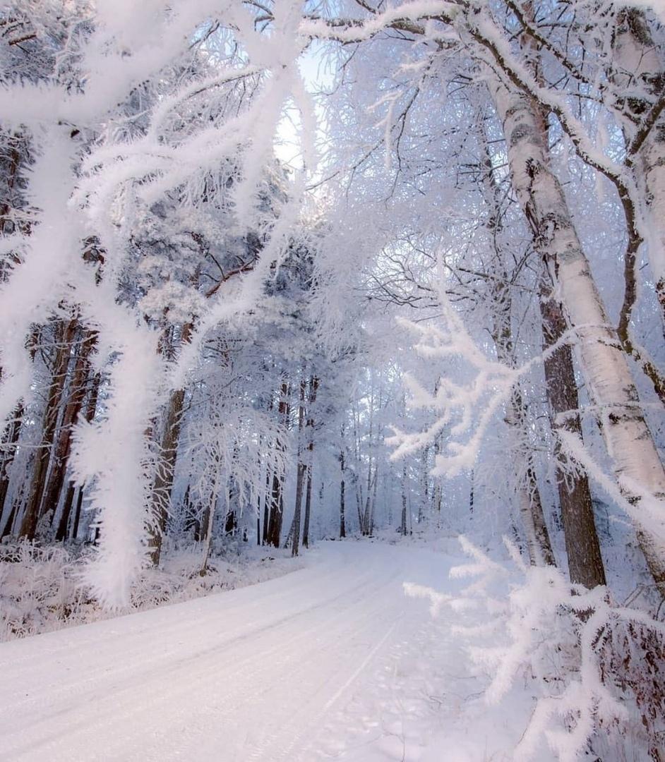 даже вертикальное фото красоты зимы уже выбрали