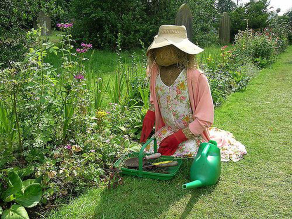 Как красиво оформить огород на даче