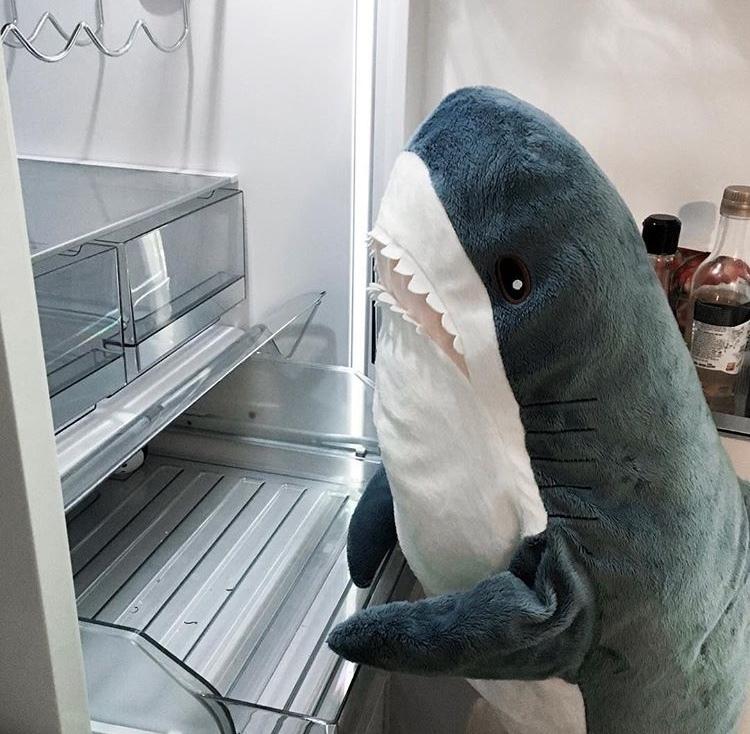 далёкой фотки акула из икеи сип панелей