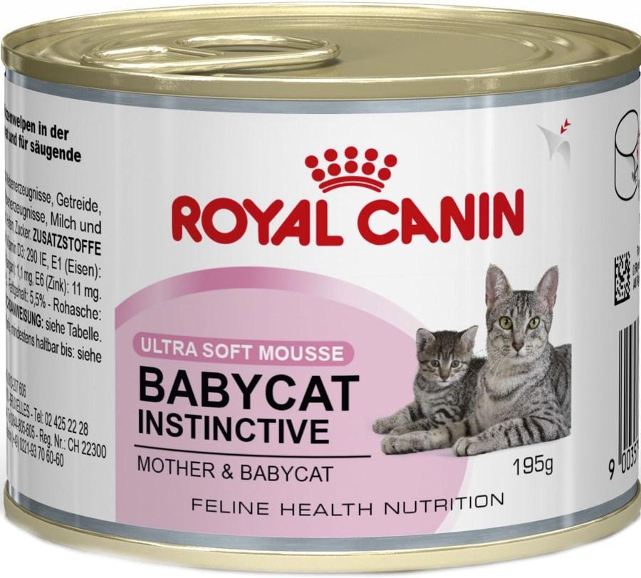 Babycat корм royal canin для кошек