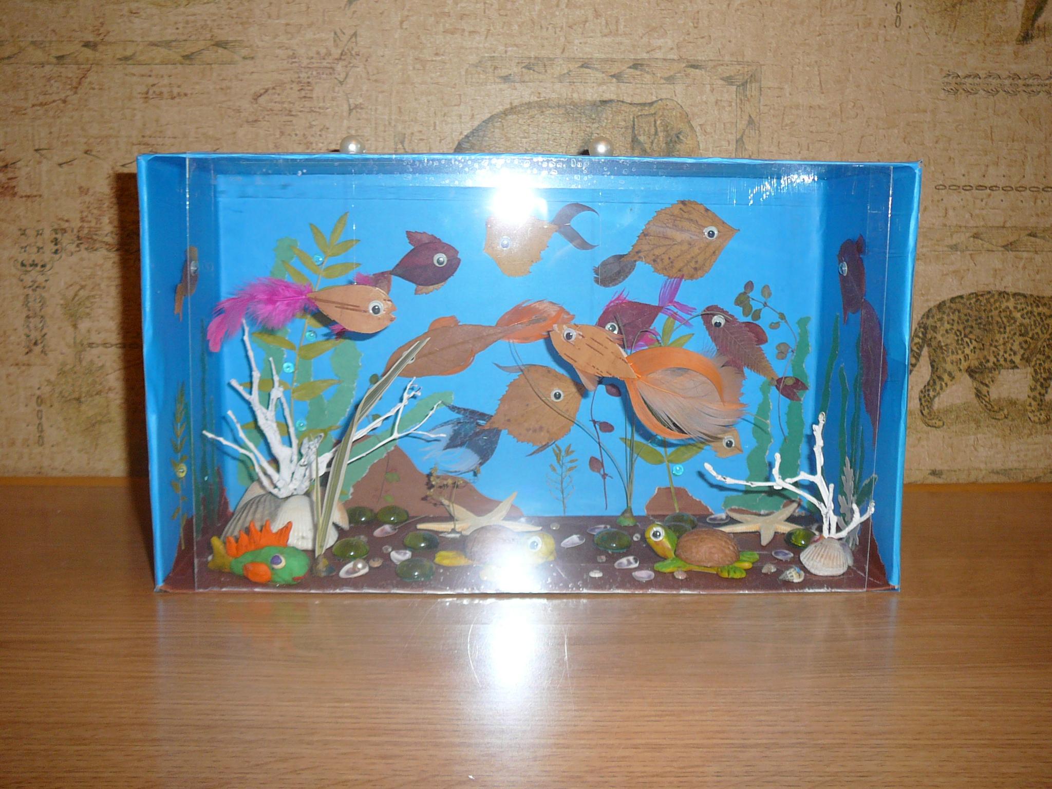 Аквариумная рыбка гурами картинка отель обновленным